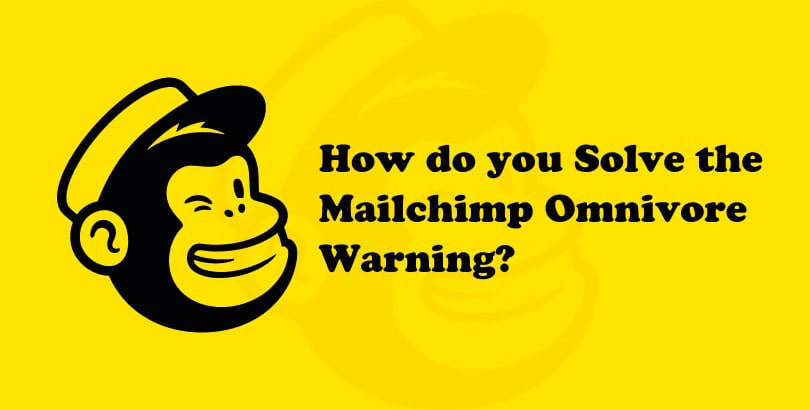 How do you Solve the Mailchimp Omnivore Warning?